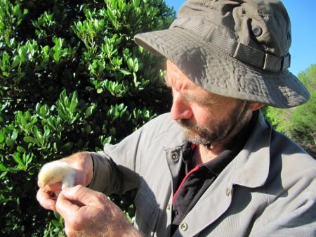 Ian Robertson  from Murdoch University in Perth Australia.