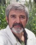 Professor Michael Jones